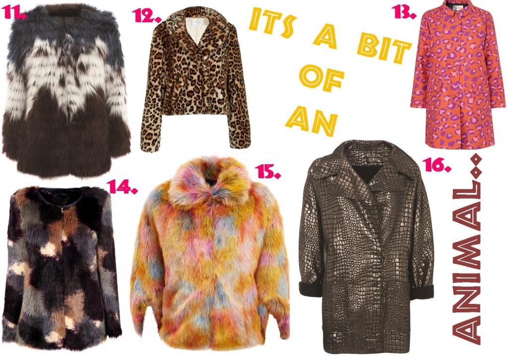Coats A/W 2013