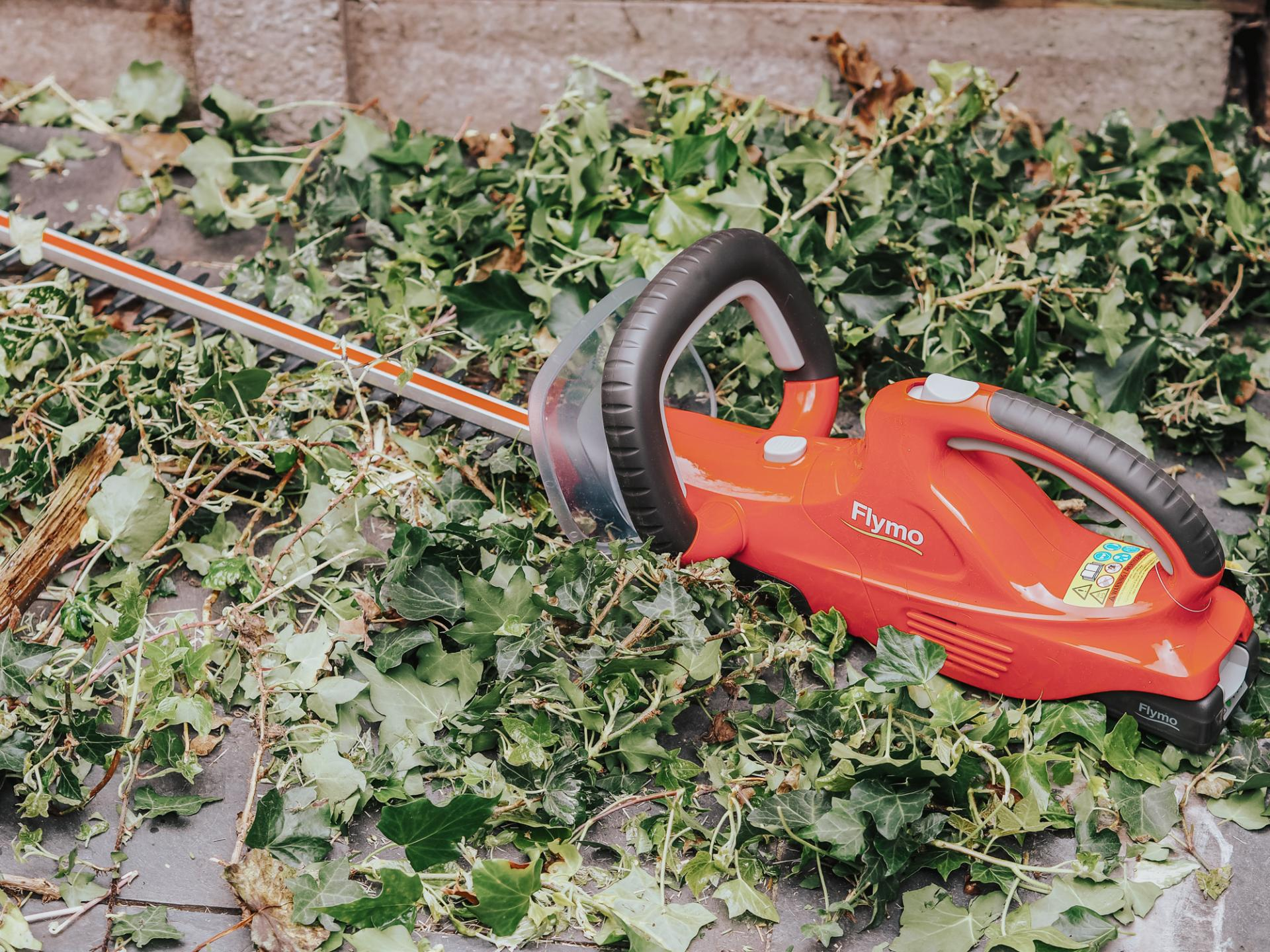 Flymo hedge trimmer review from blogger Bunnipunch